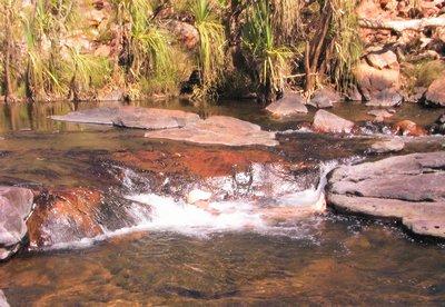 Rapids along Bell Creek