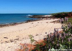Quandong Beach