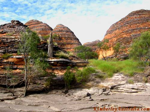 Termite mound amongst Bungle Bungles domes