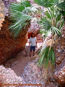 Hiking in Mini Palms Gorge