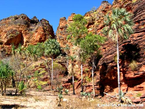 Typical Kimberley Country: Red Rocks and Palm Trees