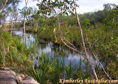 The Barnett River