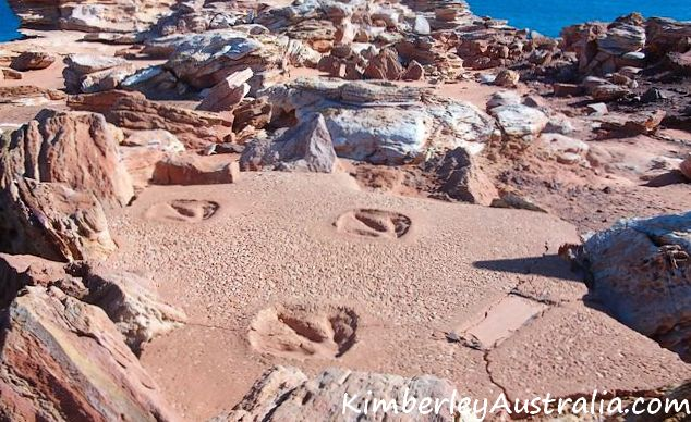 Dinosaur footprints in Broome