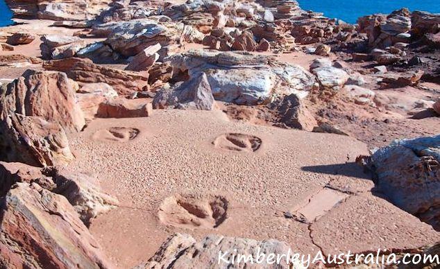 Dinosaur footprints in Broome