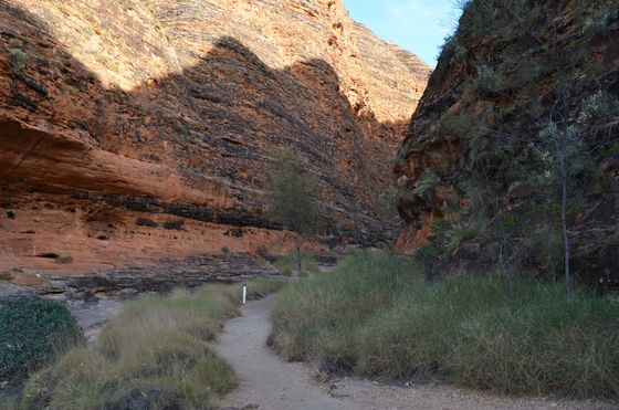 Walking between the domes of the Bungles