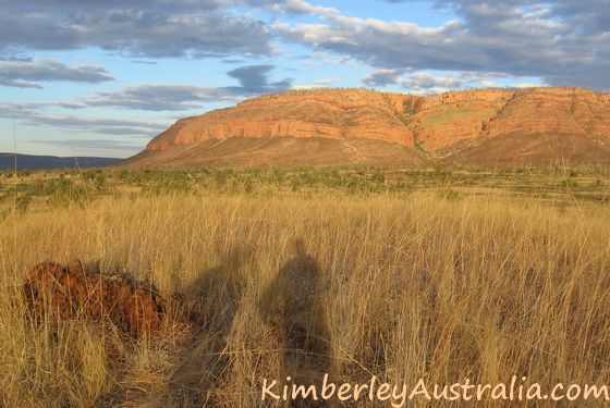 View on the track to Dimond Gorge