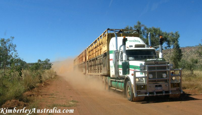Road train hurtling along the Gibb