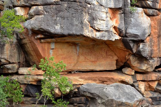 Rock art above the pool