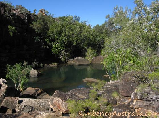 Rock pool on the way to Mitchell Falls