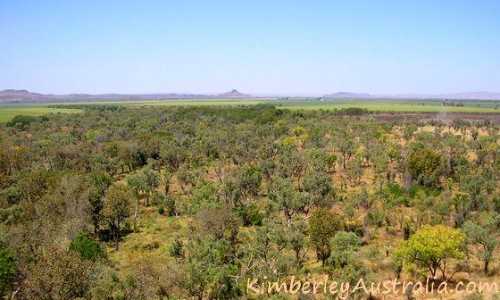 Approaching Kununurra