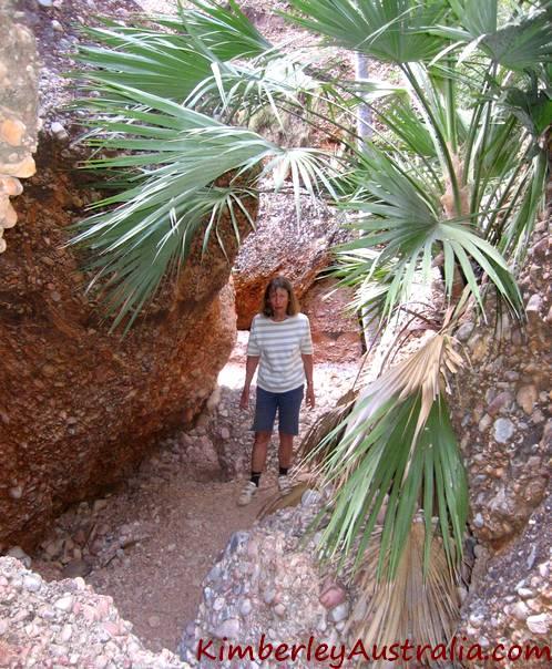 Hiking into Mini Palms Gorge