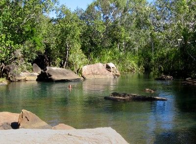 Having a swim on the way to the Mitchell Falls