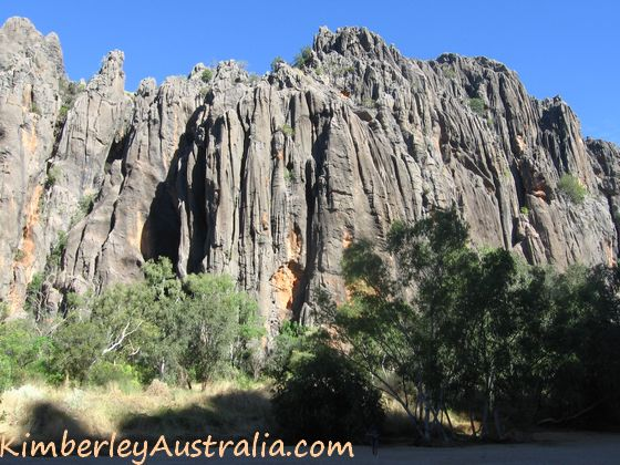 The impressive rock wall of Windjana Gorge