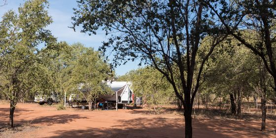 The campground at Birdwood Downs