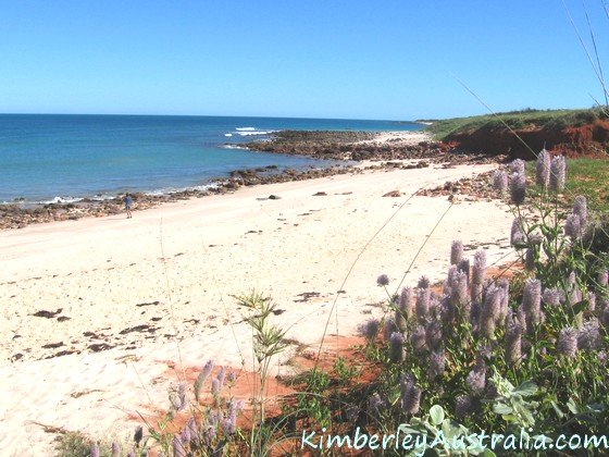 Beach at Quandong Point