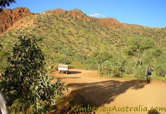 Purnululu National Park access track
