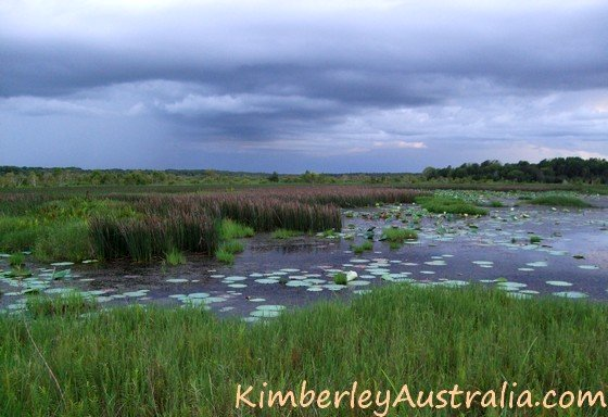 Kimberley Wet Season