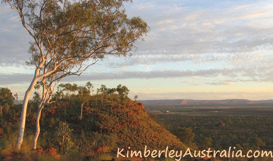 View towards Kununurra