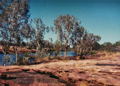 Near the King Edward River