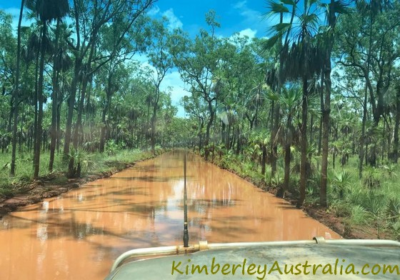 Mitchell Plateau Track in the wet season