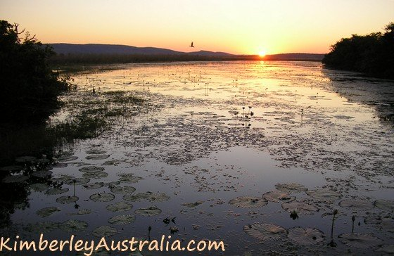 Sunset at Marlgu Billabong